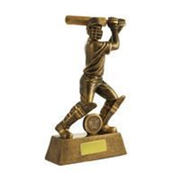 All Action Series Male - Batsman