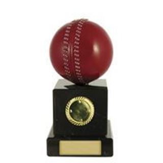 Figure On Bases Cricket Ball