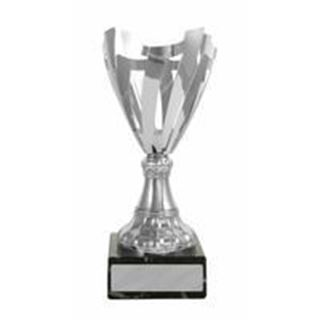Picture of Luxury Range Silver Nest Cup (W19-0607) (225mm)