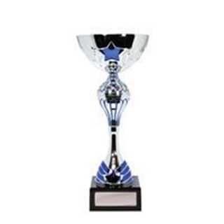Picture of Luxury Range Silver Blue Star Cup (W19-0737) (190mm)