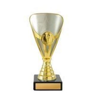 Picture of Arianna Cup Series Gold and Silver (D19-0318) (222mm)