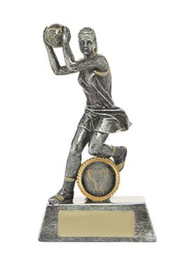 Picture of All Action Hero-Netball